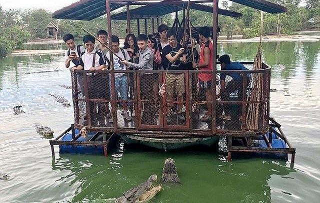 Du khách Trung Quốc điên đảo với dịch vụ câu cá giữa 4.000 con cá sấu - ảnh 2