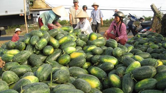 Đại sứ Mỹ: TPP mở ra thị trường lớn cho nông dân Việt Nam - ảnh 2