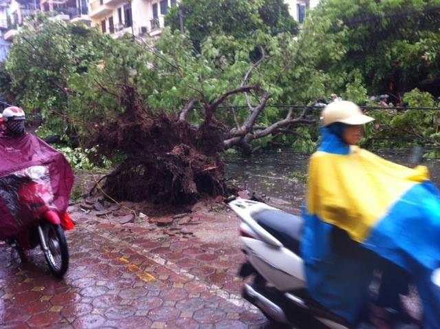 Bão số 1 giật cấp 13, gây mưa dữ dội trên nhiều tỉnh, thành - ảnh 1