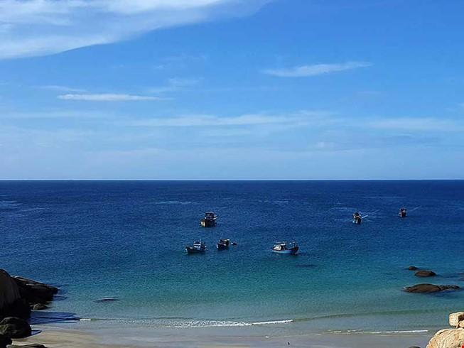 Bộ TN&MT chưa đồng ý giảm 1.000 ha Khu bảo tồn Hòn Cau - ảnh 2