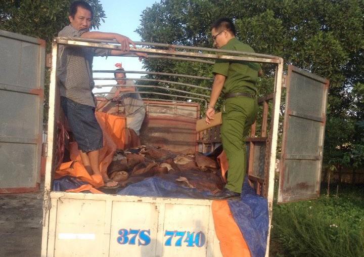 Bắt xe tải chở 4 tấn da trâu, bò hôi thối đi tiêu thụ - ảnh 1
