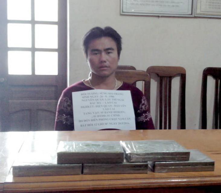 Triệt phá hai đường dây heroin Lào vào Nghệ An thu sáu bánh heroin - ảnh 1