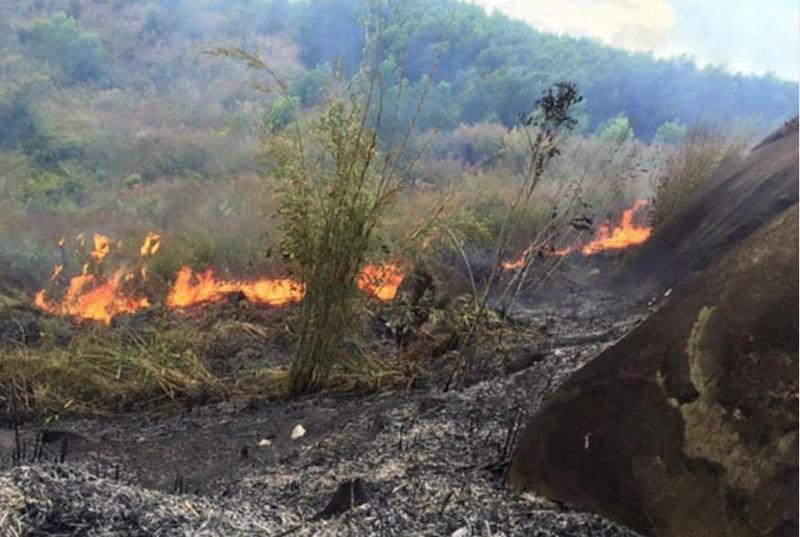 Đã khống chế được hai điểm cháy rừng biên giới Nghệ An - ảnh 1