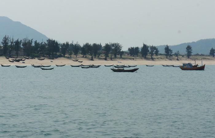 Ngư dân chờ công bố nguyên nhân cá chết mới ra khơi - ảnh 4