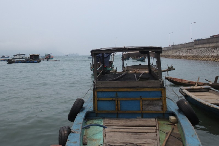 Ngư dân chờ công bố nguyên nhân cá chết mới ra khơi - ảnh 2