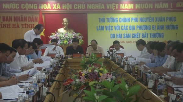 Thủ tướng Nguyễn Xuân Phúc: Làm rõ nguyên nhân cá chết - ảnh 2