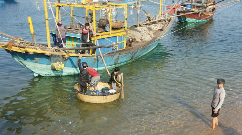 Bắt đầu tổng kiểm tra về môi trường tại Formosa - Vũng Áng - ảnh 3