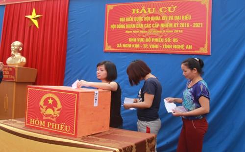 Vợ chồng nghệ sĩ 'Táo giao thông' bỏ phiếu tại Nghệ An - ảnh 2