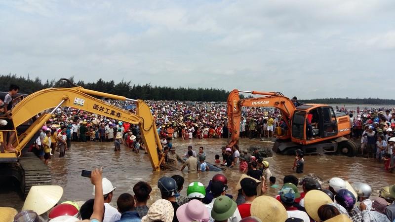 Hàng ngàn người dân hợp sức đưa cá voi về với biển - ảnh 1