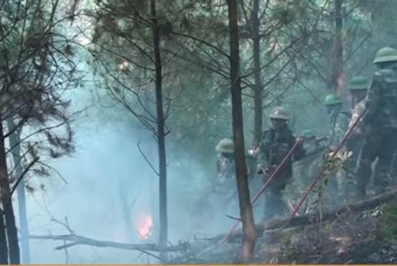 Bí thư bị gãy tay, cán bộ địa chính ngất xỉu khi chữa cháy rừng  - ảnh 2