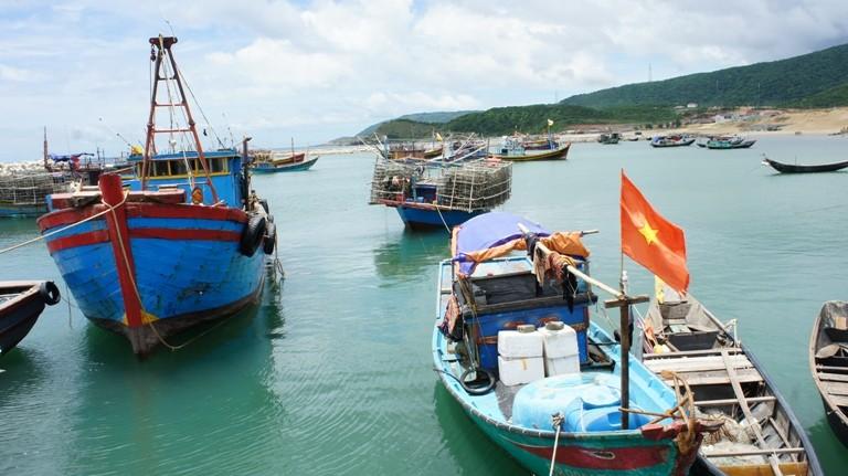 Người bị ảnh hưởng bởi sự cố cá chết do Formosa được hỗ trợ BHYT - ảnh 3