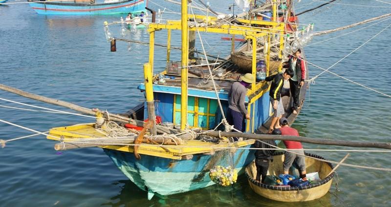 Hà Tĩnh lập ban chỉ đạo sau sự cố môi trường cá chết do Formosa gây ra - ảnh 3