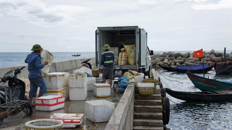 Hoạt động thu mua hải sản ở  Bến cá âu thuyền phường Kỳ Phương