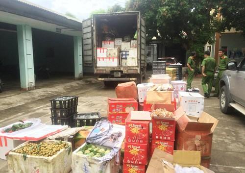Bắt giữ xe chở 2 tấn hoa quả nhãn mác Trung Quốc lên miền núi bán - ảnh 1