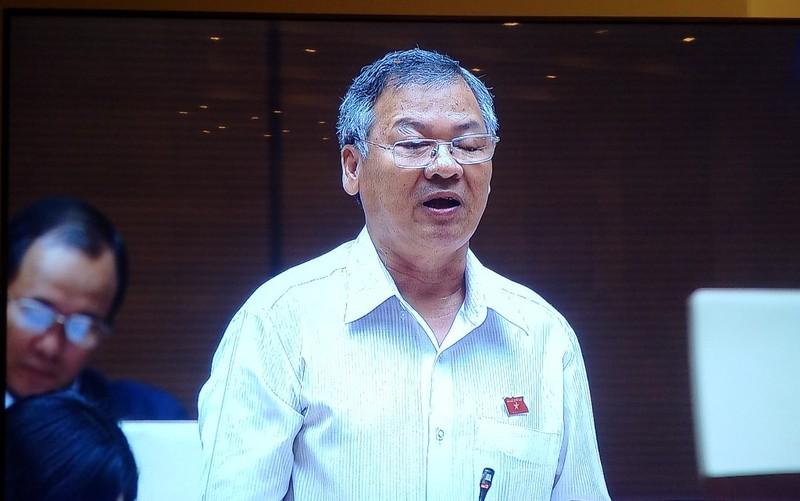 'Theo quy định pháp luật, phân bón Thuận Phong là giả' - ảnh 2