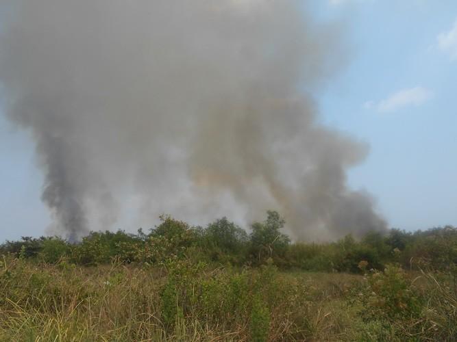 Lại cháy lớn ở bãi cỏ Quận 2 - ảnh 1