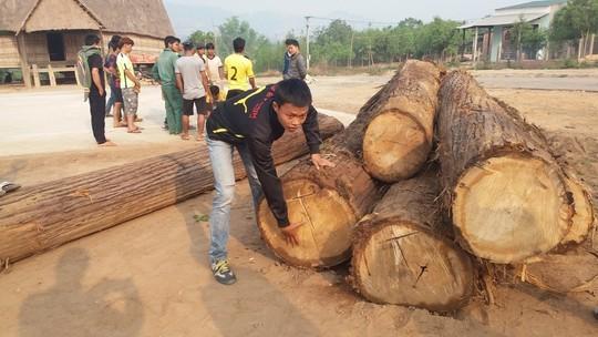 Số gỗ bị lâm tặc bỏ lại tại nhà rông làng Kon Sơ Lal