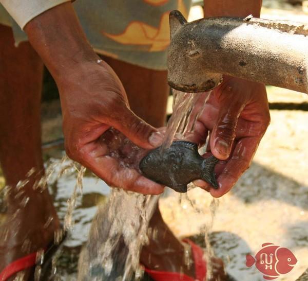 Tìm hiểu về chú cá thần kỳ gây sốt ở Campuchia - ảnh 3