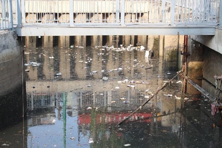 Cá thoi thóp nổi đầy trên kênh Nhiêu Lộc - ảnh 2
