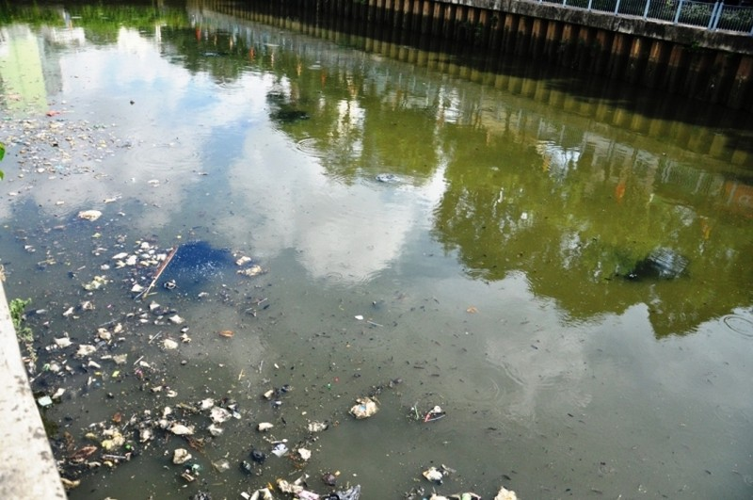 Cá thoi thóp nổi đầy trên kênh Nhiêu Lộc - ảnh 5