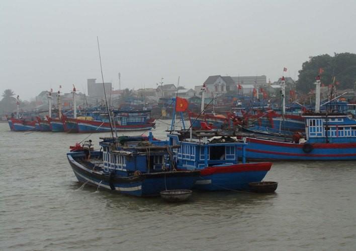Bão số 3, Quảng Ngãi 'phong tỏa' tuyến đường biển Sa Kỳ- Lý Sơn  - ảnh 1