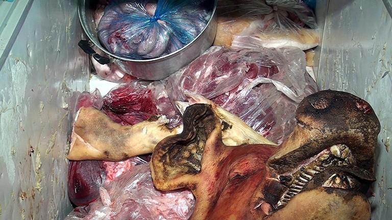 Heo nái bẩn thành thịt lợn rừng vào… quán nhậu  - ảnh 2