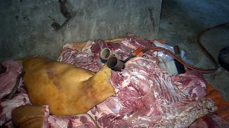 Heo nái bẩn thành thịt lợn rừng vào… quán nhậu  - ảnh 1