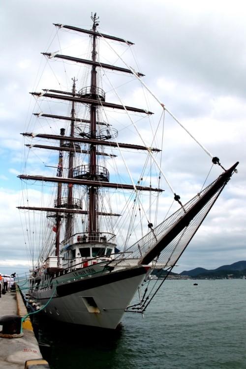 Chùm ảnh: Đón tàu buồm huấn luyện hải quân về nước - ảnh 9