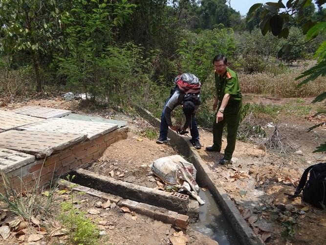 Trang trại heo nằm trong… khu bảo tồn thiên nhiên - ảnh 1