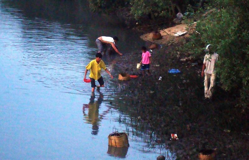 Thủy triều đỏ đã tấn công bờ biển Bình Thuận như thế nào? - ảnh 2