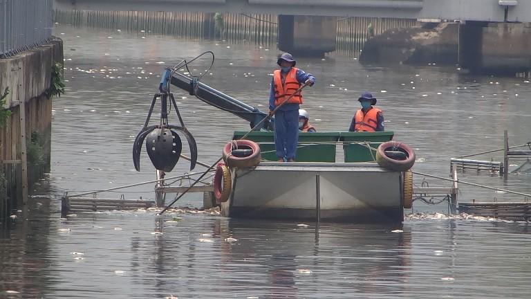 Bất ngờ với lượng cá chết hơn 70 tấn ở kênh Nhiêu Lộc - Thị Nghè - ảnh 2