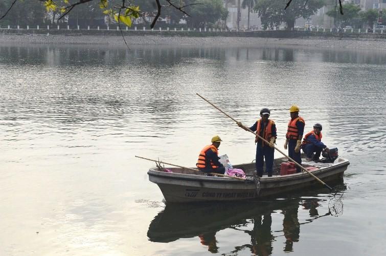 Vớt được gần 6 tấn cá chết ở hồ Hoàng Cầu  - ảnh 1