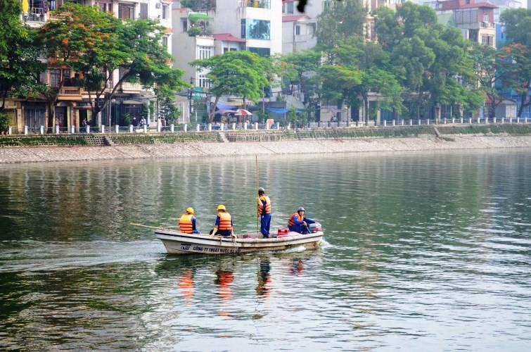Vớt được gần 6 tấn cá chết ở hồ Hoàng Cầu  - ảnh 2