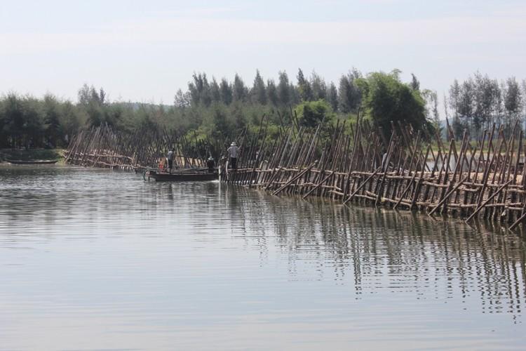 Đập bổi trên sông Trà Bồng thuộc địa phận xã Bình Dương.