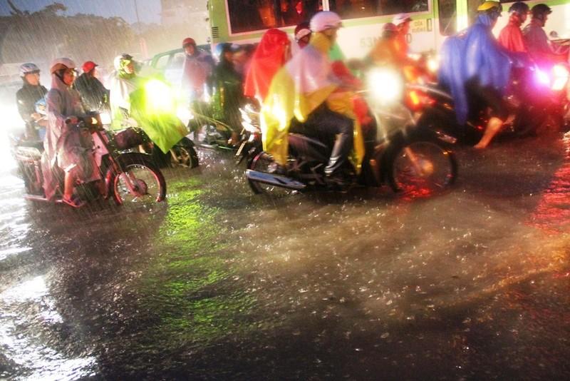 Chùm ảnh: Sân bay Tân Sơn Nhất bị biển nước vây quanh - ảnh 18