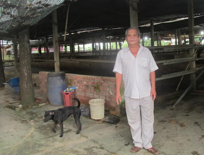 Ông Rỏn bên chuồng trâu, trang trại bỏ hoang vì  mất tiền, bản thân lâm vào tù tội (ảnh N.D)