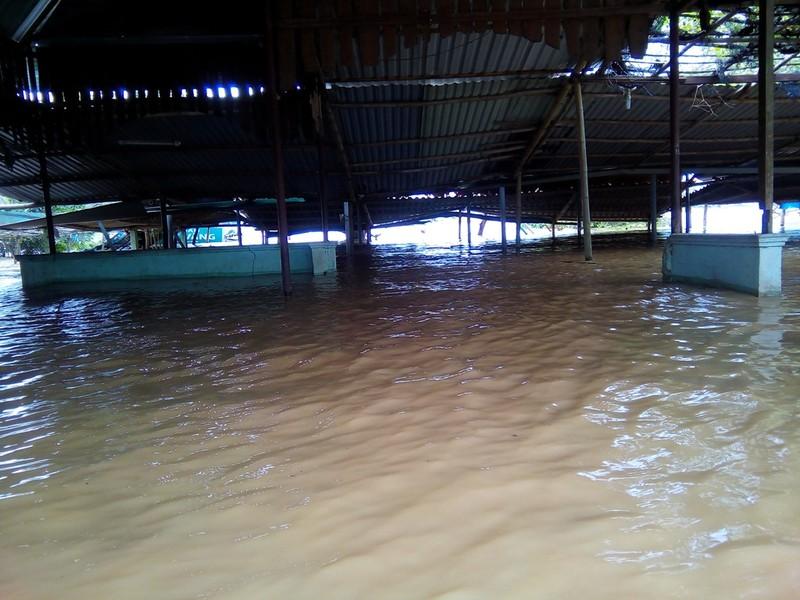 Quảng Trị: Lũ về bất ngờ nhà dân chìm trong biển nước - ảnh 2