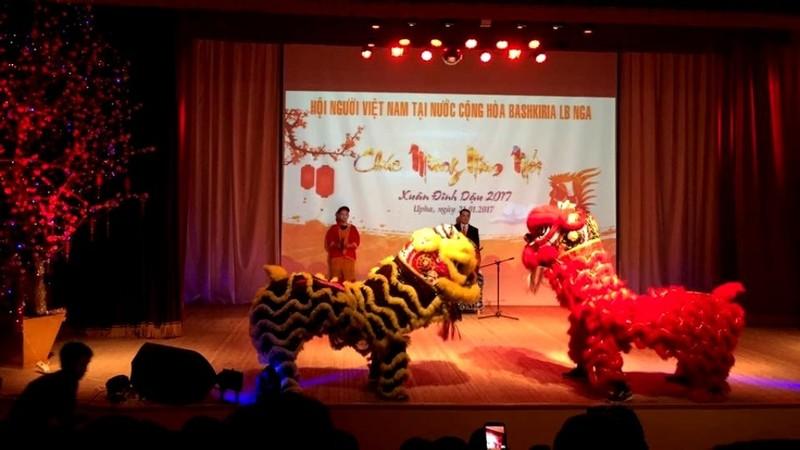 Xuân quê hương yêu thương - Tết Việt đầu tiên ở Nga - ảnh 13