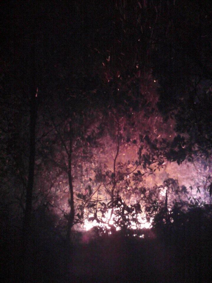 Hơn 10ha rừng thực bì và cây tự nhiên cháy trong điều kiện hanh khô, gió to nên công tác dập lửa kéo dài đến 13 giờ đồng hồ