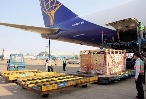 28 chuyến bay đặc biệt vận chuyển bò về Việt Nam - ảnh 1