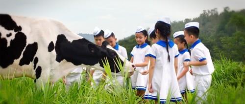 Hành trình 40 năm Giấc mơ sữa Việt - ảnh 2
