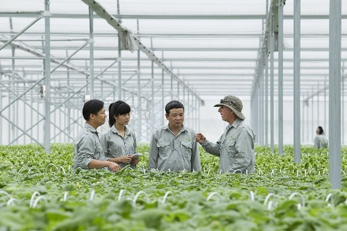 Vingroup liên kết với 1.000 hợp tác xã và hộ nông dân - ảnh 1