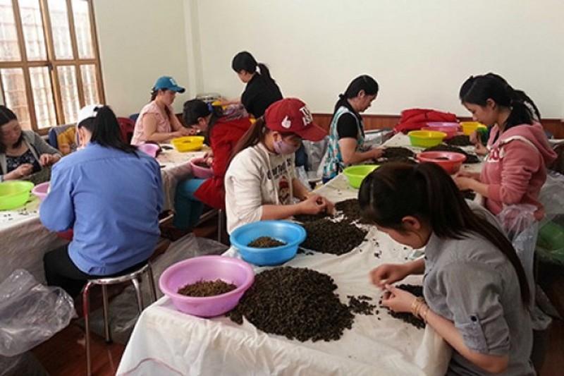 Trung Quốc cam kết bảo quản tốt thi thể nữ doanh nhân Hà Linh - ảnh 1