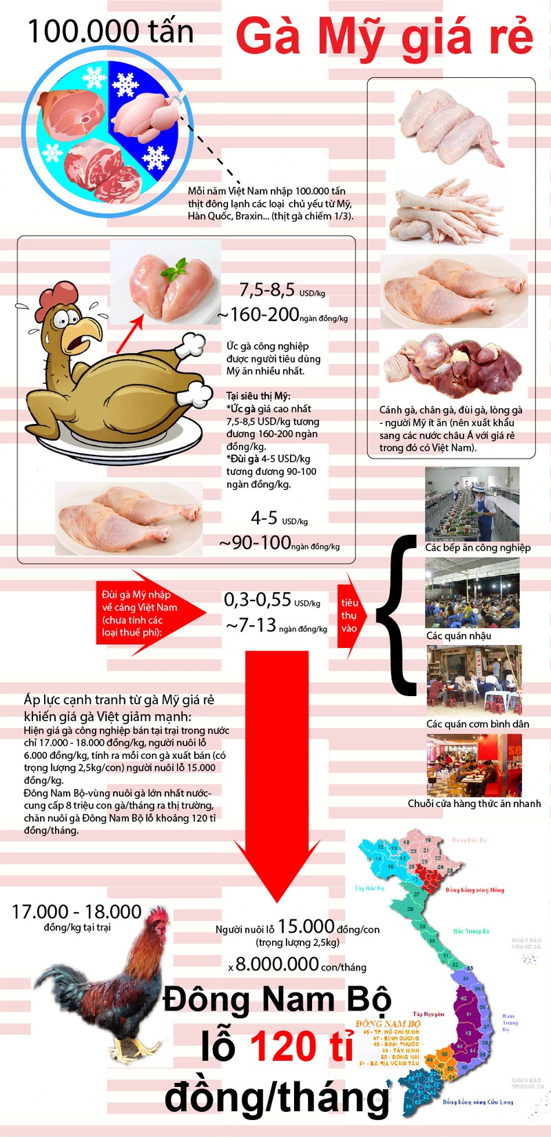 Infographic: Điều chưa biết về đùi gà Mỹ 7.000 đồng/kg - ảnh 1