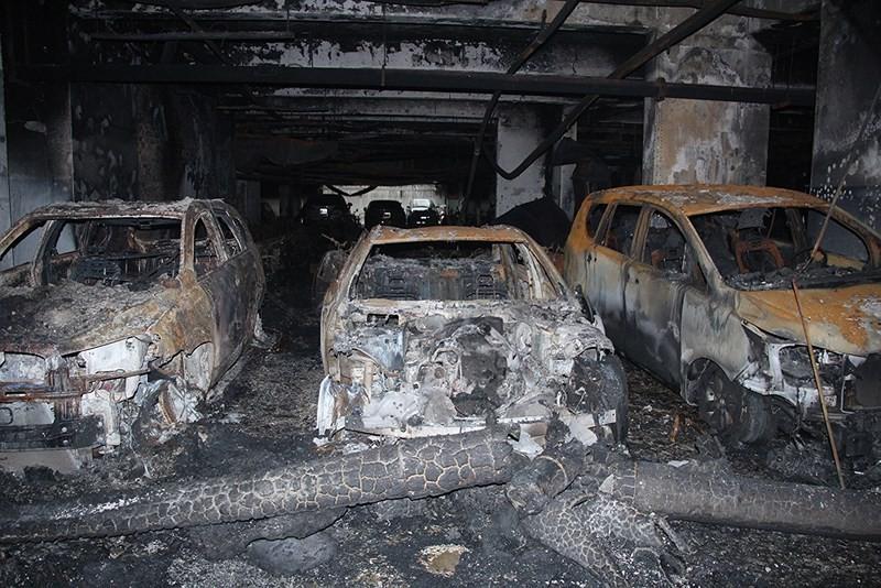 Vì sao 577 'đẩy rủi ro' vụ cháy Carina cho Hùng Thanh? - ảnh 1