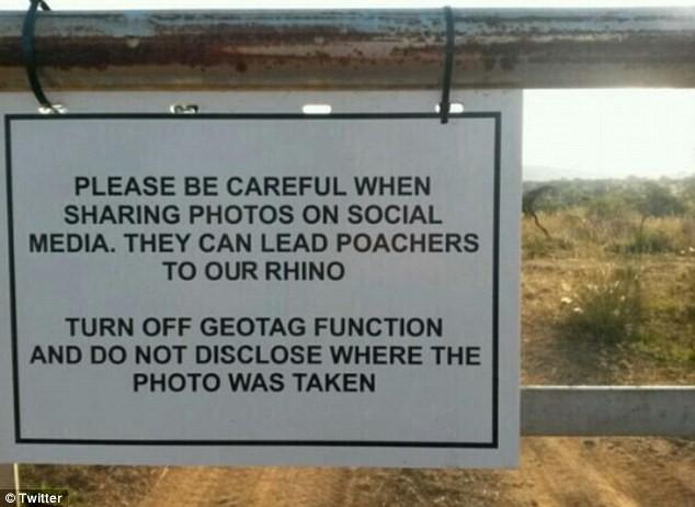 Cảnh báo nạn săn bắt động vật quý hiếm qua Facebook - ảnh 3