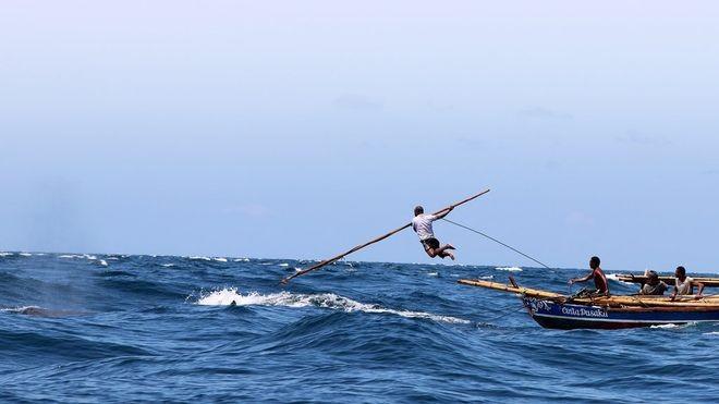 Cận cảnh săn cá voi truyền thống: Nguy hiểm như phim  - ảnh 3