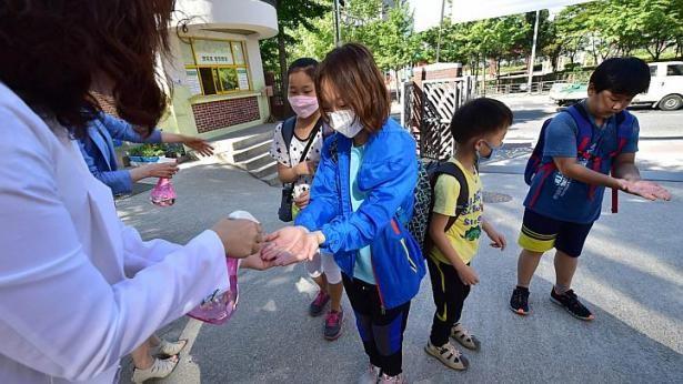Chùm ảnh cúm Trung Đông 'tấn công' Hàn Quốc - ảnh 10