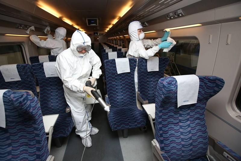 Chùm ảnh cúm Trung Đông 'tấn công' Hàn Quốc - ảnh 3