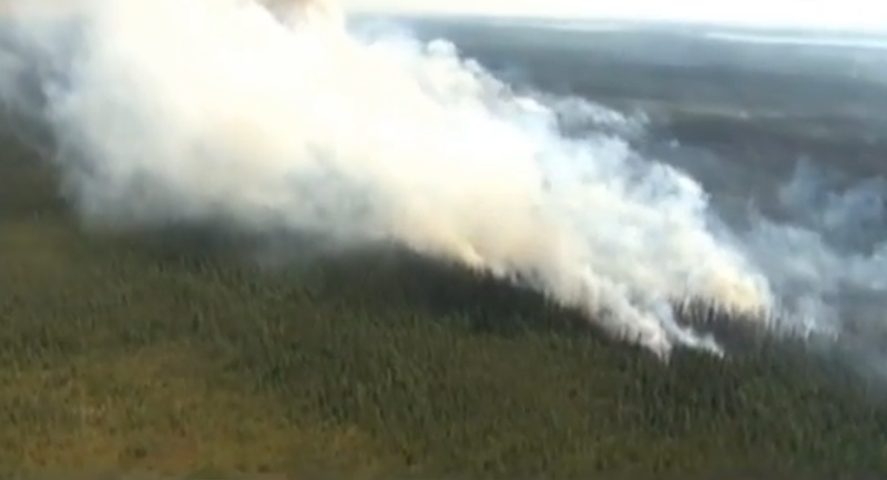Gần 8000 người di tản vì cháy rừng khủng khiếp - ảnh 1